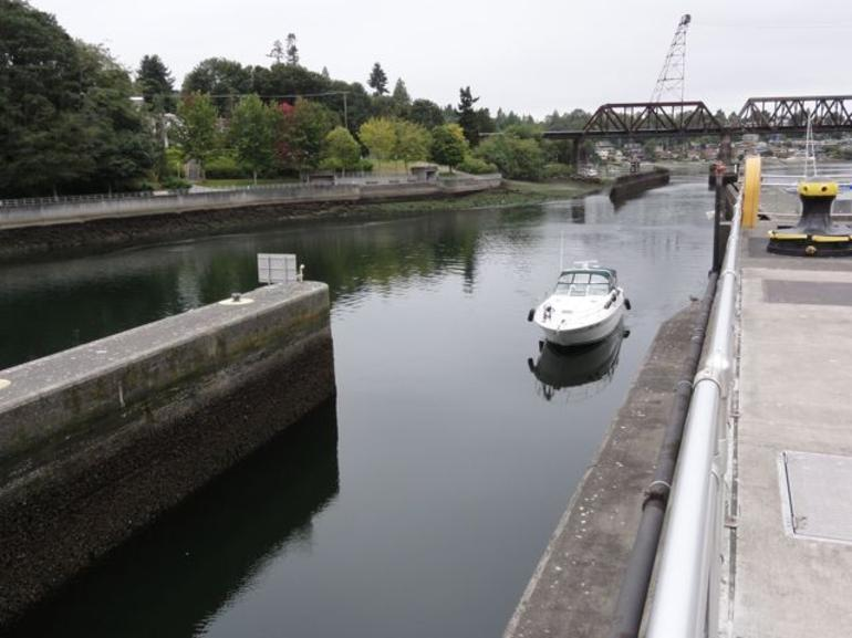 Ballard Locks in Seattle - Seattle