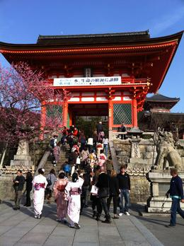 Photo of Kyoto Kyoto Full-Day Sightseeing Tour including Nijo Castle and Kiyomizu Temple Gate of Kiyomizudera temple