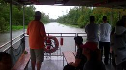 Swamp and Bayou Sightseeing Tour - October 2011
