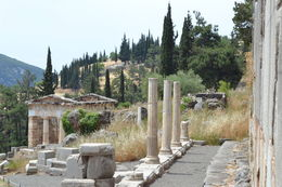 During the guided tour at Delphi , Adriana W - June 2015