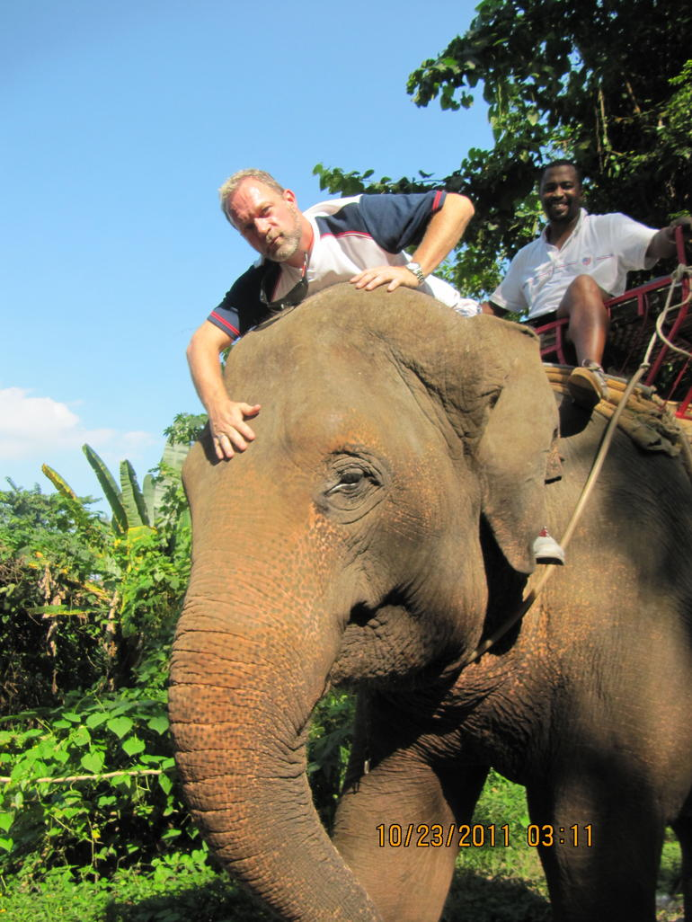 Elephant Ride.   and quot; Charlie and quot; She's amazing. - Bangkok