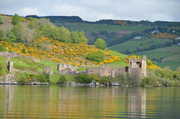 Photo of Edinburgh 2-Day Loch Ness and Inverness Small Group Tour from Edinburgh Loch Ness Castle Ruins