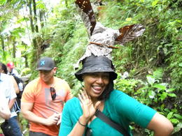 Photo of San Juan El Yunque Rainforest Half-Day Trip from San Juan Nature Hat in El Yunque Rainforest
