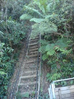 Photo of Sydney Blue Mountains Nature and Wildlife Day Tour from Sydney Rail Track in the valley