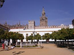 Photo of Seville Seville Classical or Historical Morning Sightseeing Tour Seville Cathedral and Tower