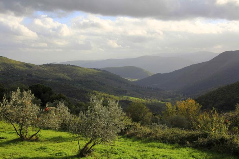a November afternoon in the Chianti region near Florence - Florence