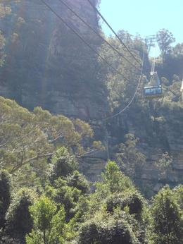 Photo of Sydney Blue Mountains Nature and Wildlife Day Tour from Sydney Cable Car