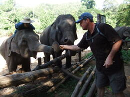 Photo of Chiang Mai Chiang Dao Elephant Jungle Trek and Ping River Rafting Tour from Chiang Mai Feeding the elephants