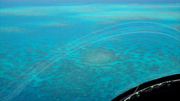 There are so many amazing sights to see flying over the Great Barrier Reef in a helicopter! - March 2012