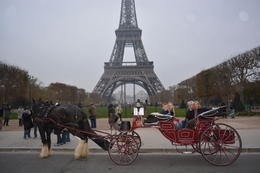 Photo of Paris Romantic Horse and Carriage Ride through Paris Horse and carriage