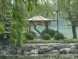 Photo of Beijing Beijing Lama Temple, Panda Garden and Ancient Altar Day Tour Park were we had lunch