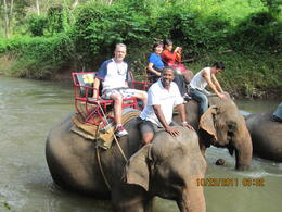 Photo of Bangkok Khao Yai National Park and Elephant Ride Day Trip from Bangkok The Group on tour
