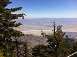 Photo of Palm Springs Palm Springs Aerial Tramway coachella valley