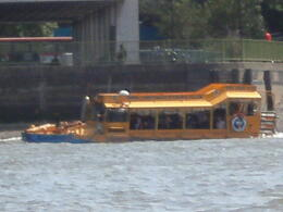 Photo of London London Duck Tour Duck on the water