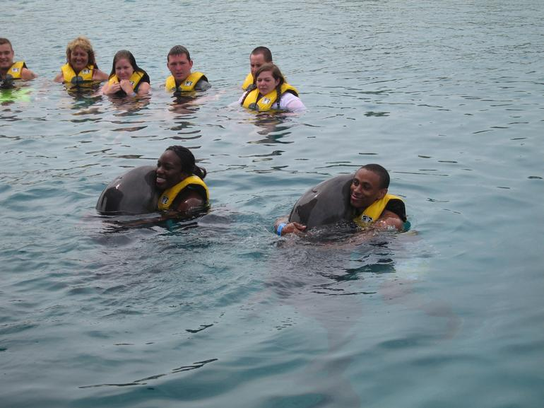 Hugging with the dolphins - Puerto Plata