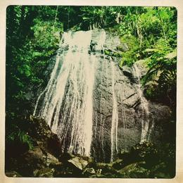 Once of many beautiful water falls in El Yunque tour. , Tenisha B - December 2013