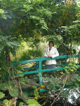 Pure heaven, surrounded by lush greens of the Nymphéas Garden , Brex-Anna - October 2012