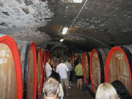 Photo of Florence Chianti Region Wine Tasting Half-Day Trip from Florence Castle Wine-Producing Cellar