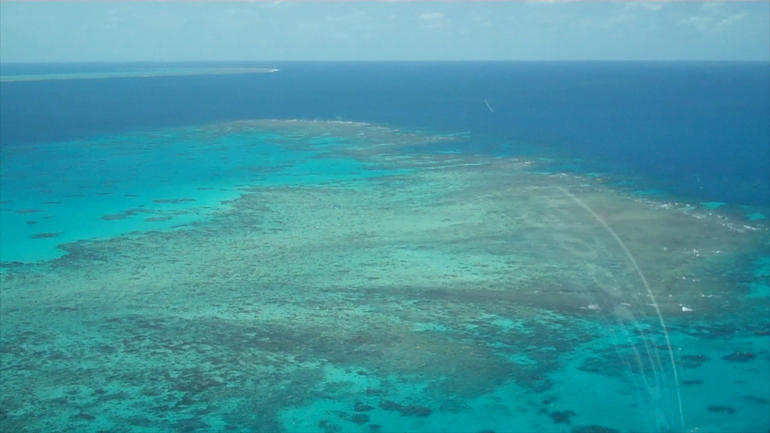 There are so many amazing sights to see flying over the Great Barrier Reef in a helicopter!