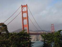 Photo of San Francisco Alcatraz Tour plus Muir Woods, Giant Redwoods and Sausalito Day Trip The Golden Gate Bridge