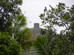 Photo of San Juan El Yunque Rainforest Half-Day Trip from San Juan Distant fortress on a hill