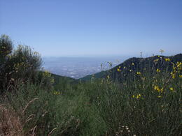 One view while climbing Mt. Vesuvius , Janet - August 2012