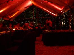 Photo of Cairns & the Tropical North Cairns Flames of the Forest Dining Experience Eating in the forest