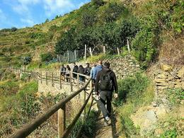 Photo of Florence Cinque Terre Hiking Day Trip from Florence @ Manarola