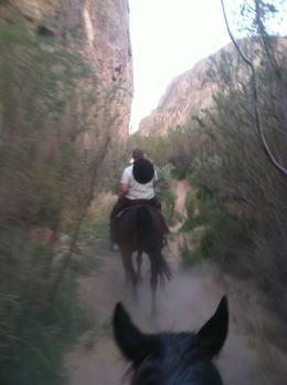 Photo of Las Vegas Wild West Sunset Horseback Ride with Dinner On the ride