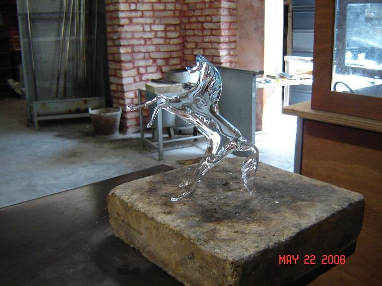 The Glass horse - Venice