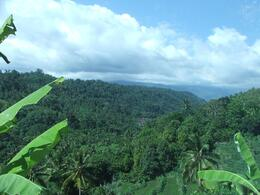 Throughout Bali you will see magnificant views of the mountains, the country side and lots of rice paddies!, Gail F - July 2009