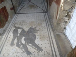 Mosaic tiled entrance to a home with the caption beneath the dog saying and quot;Beware of Dog and quot;! , Maria A B - November 2014