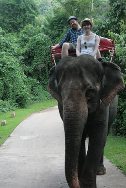 Our guide took some wonderful photos for us while we were riding the elephant - the highlight of the trip! , Rodney H - June 2011