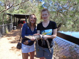 Photo of Sydney Tobruk Australian Outback Experience including Aussie BBQ Lunch Reptile Park