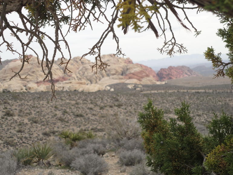 The calico hills from the overlook - Las Vegas