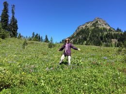 I'm amidst the gorgeous alpine wildflowers. , Harriet C - June 2015