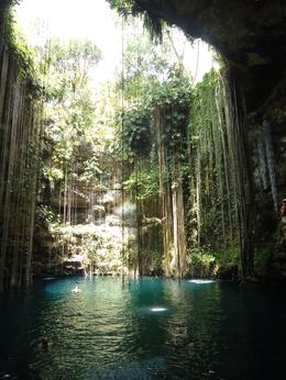 Photo from the inside of the cenote where you can jump in. , r&r - April 2011