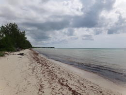 Photo of Freeport Bahamas East End and Lucayan National Park Tour Golden Rock beach