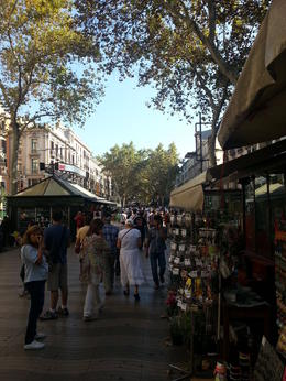 Photo of Barcelona Barcelona Hop-on Hop Off Tour: North to South Route La Ramblas
