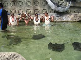 So we got a chance to feed the stingrays as well., Devin D - June 2008