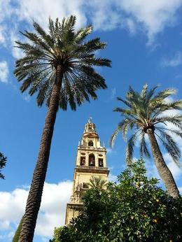 Photo of Madrid 4-Day Spain Tour: Cordoba, Seville and Granada from Madrid Beautiful Cordoba