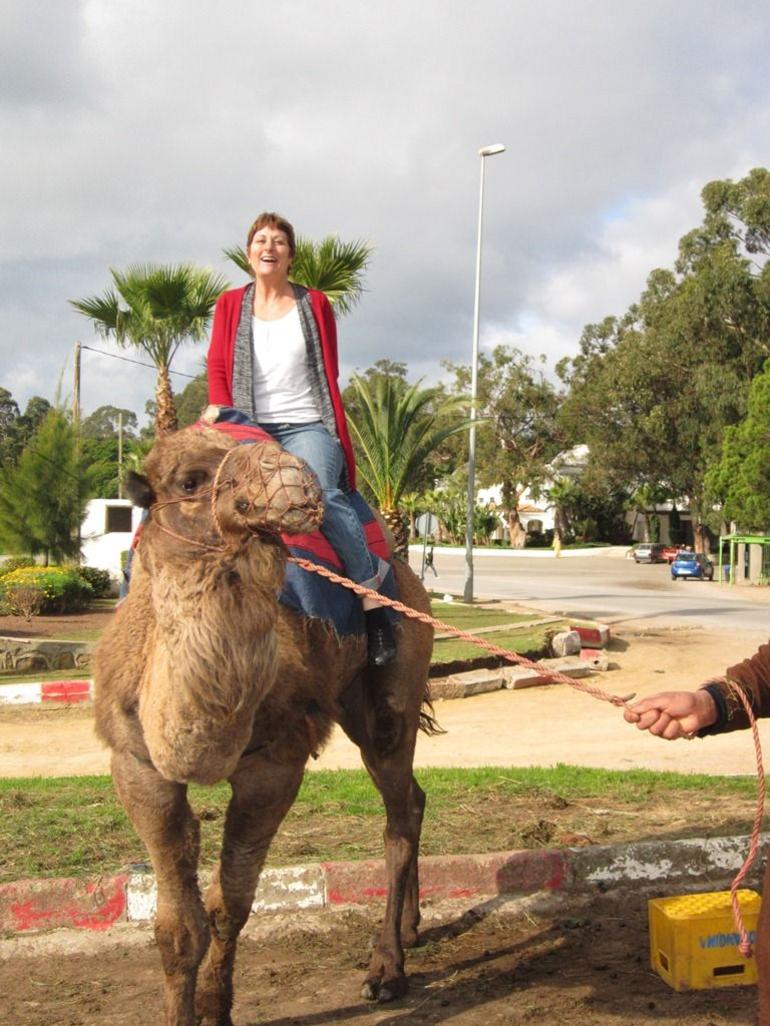 Don't get to ride on a camel in my part of the world :) - Malaga