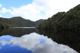 Photo of Tasmania Gordon River Cruise from Strahan Gordon River Tasmania