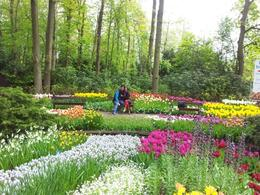 Photo of   Keukenhof Gardens
