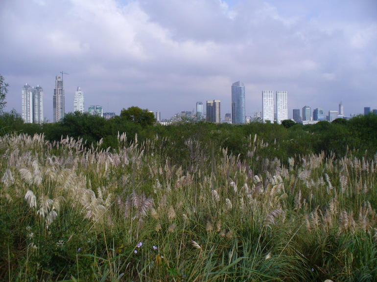 Biking through the ecological reserve, with great views of Buenos Aires!
