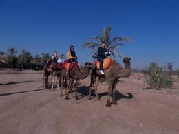 Photo of Marrakech Atlas Mountains Hot Air Balloon Ride from Marrakech with Berber Breakfast and Desert Camel Experience Camel Trekking
