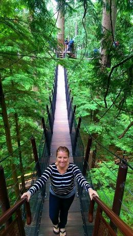 the bridge was fun/scary. the cliff walk was cool and walking through the tree tops was great , Melissa M - July 2015