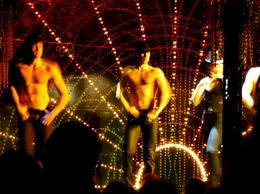 Photo of Paris Paris Paradis Latin Dinner and Show Dancers in the show
