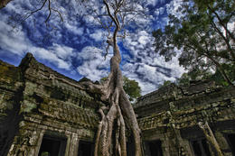 Photo of Siem Reap 3-Day Siem Reap Tour: Angkor Wat, Ta Prohm, Bayon and Tonle Sap 9451736316_902442e743_k.jpg
