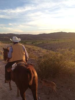 Photo of Las Vegas Wild West Sunset Horseback Ride with Dinner Follow the leader